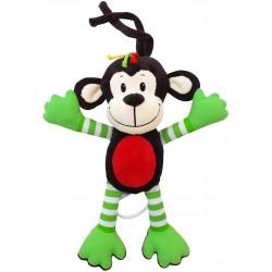 Pozytywka Małpka